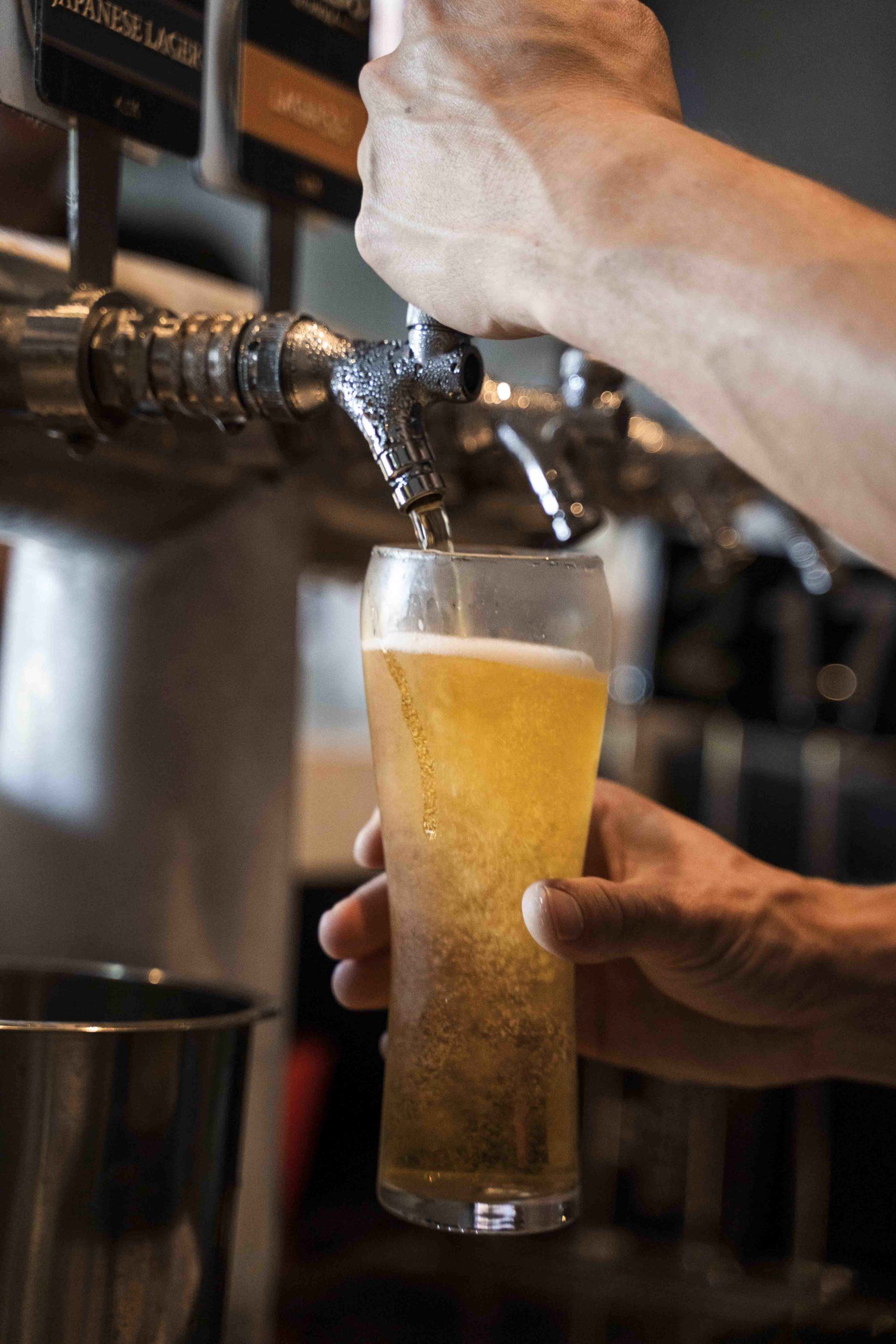 Heads of Noosa brewery beer from tap
